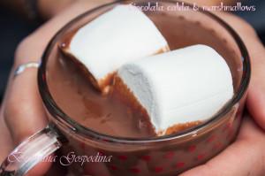 ciocolata_marshmallows_05