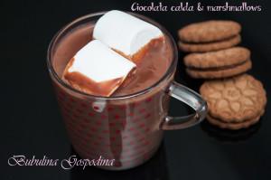 ciocolata_marshmallows_06