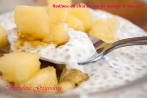 budinca_chia_sos_mango_ananas_04